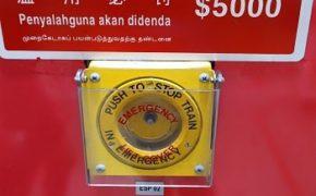 запреты и штрафы в сингапуре