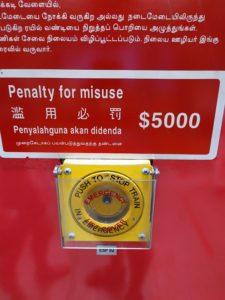 штрафы и запреты Сингапура