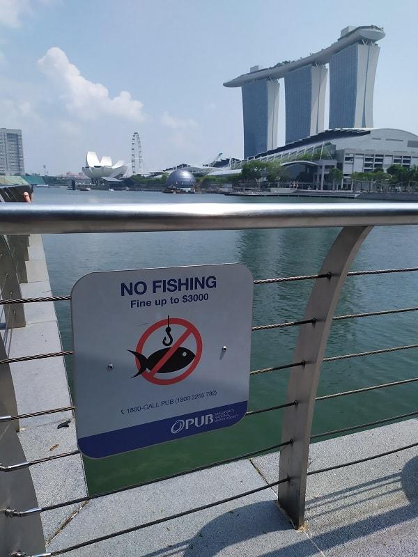 За что штрафуют в Сингапуре