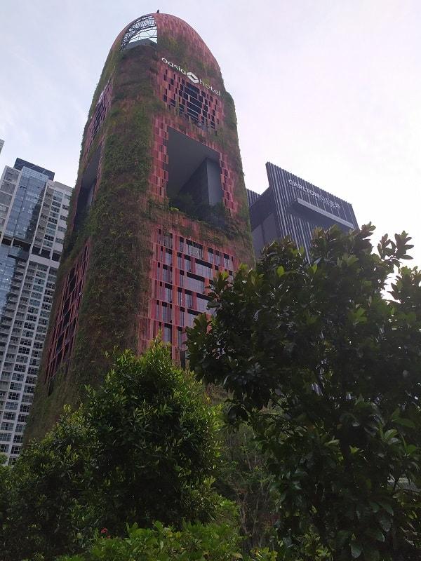 отели и апартаменты в сингапуре