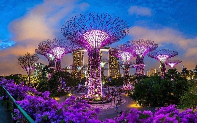 Футуристические деревья и парк в сингапуре