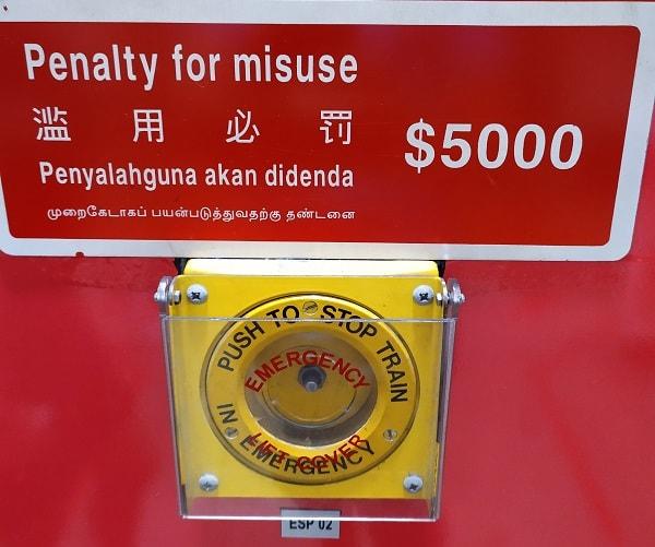 язык в сингапуре