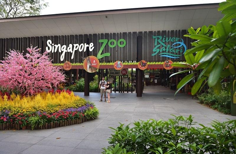 вход в зоопарк в сингапуре