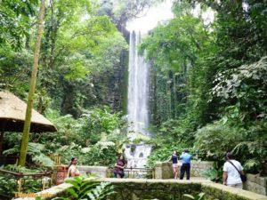 Водопад в парке птиц Jurong