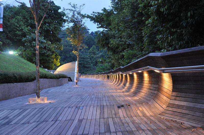 сингапур не для туриста