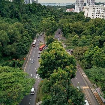 нетуристический сингапур