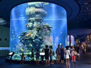 S.E.A. Aquarium Сингапур